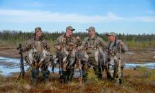 Маним белолобого...Охота на гуся с манком!