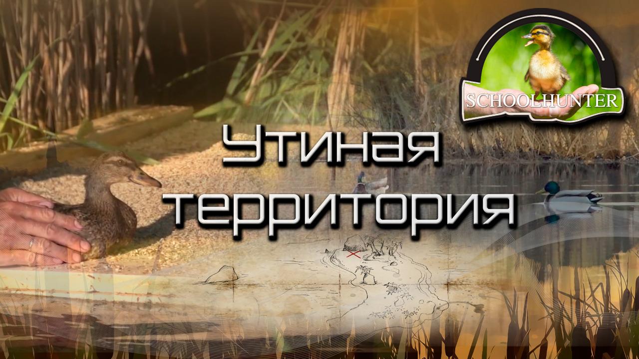 """Проект """" Утиная территория"""""""