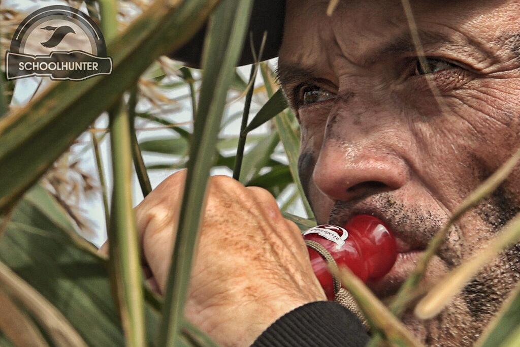 Фото № 4 Охота на утку в Ростовской области 2019 - купить по доступным ценам