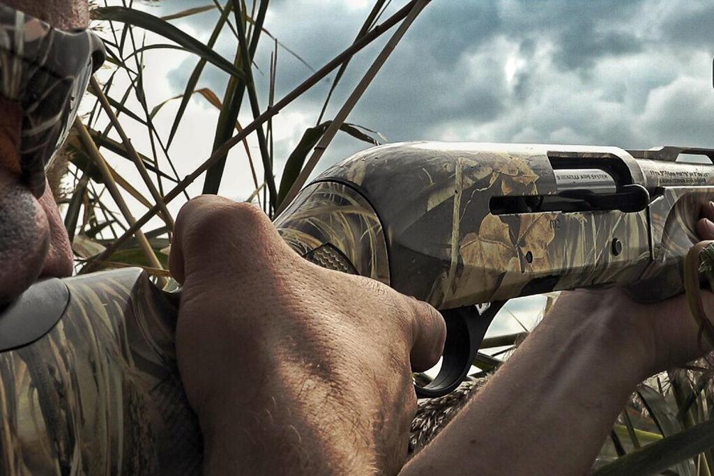 Фото № 5 Охота на утку в Ростовской области 2019 - купить по доступным ценам